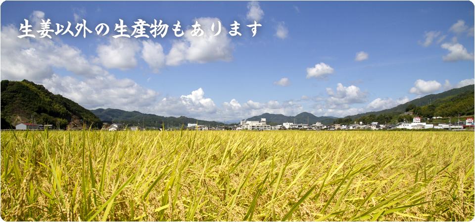 KARIYA_About_farmproducts