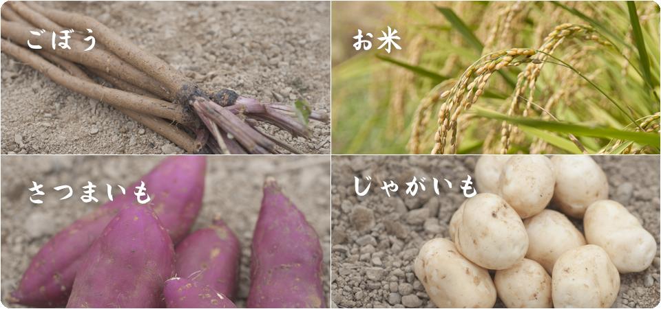 KARIYA_About_farmproducts2